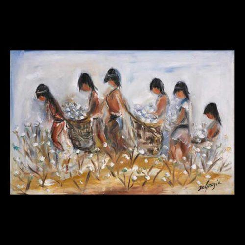 Pima Indians Pick Cotton